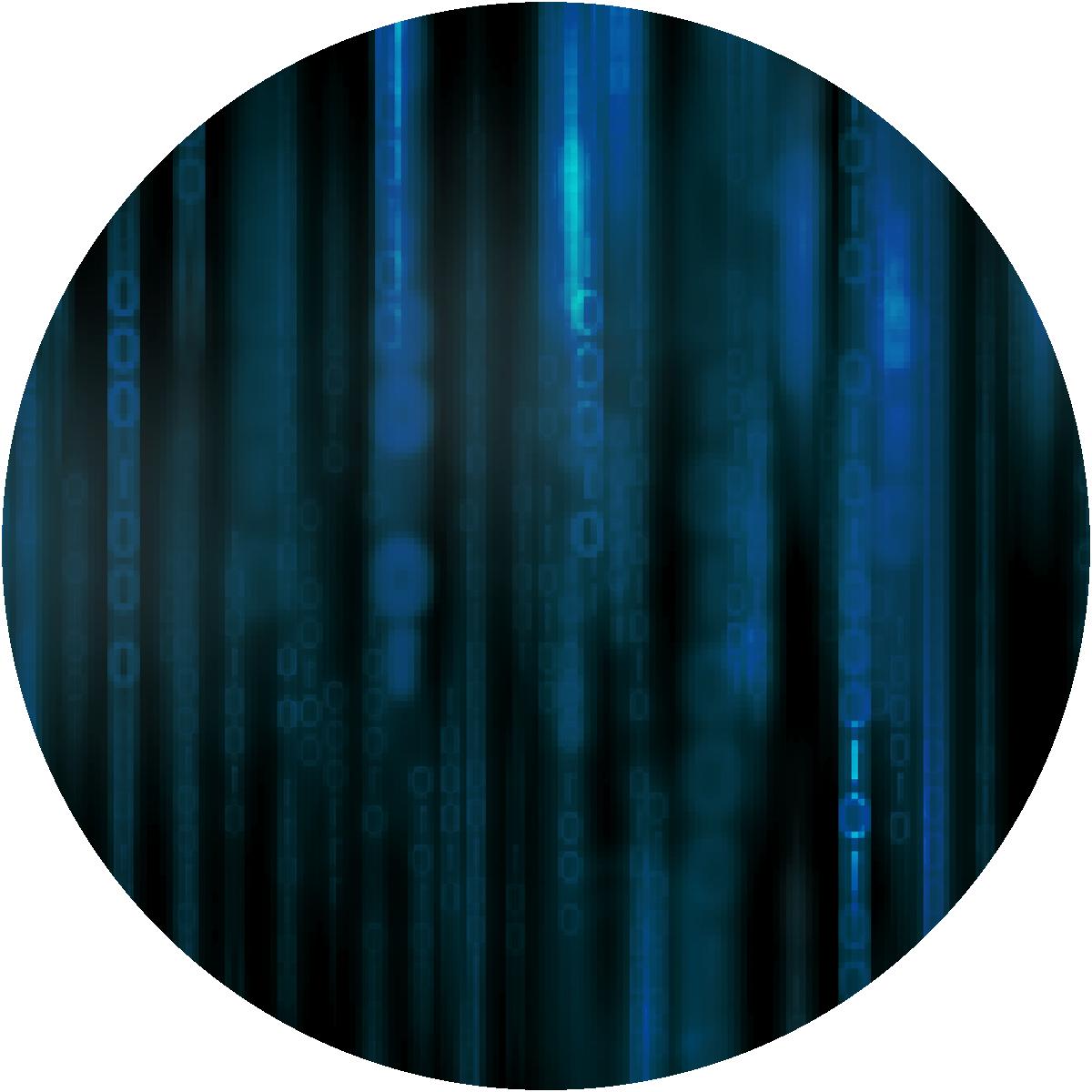 Eliminate Data Risk