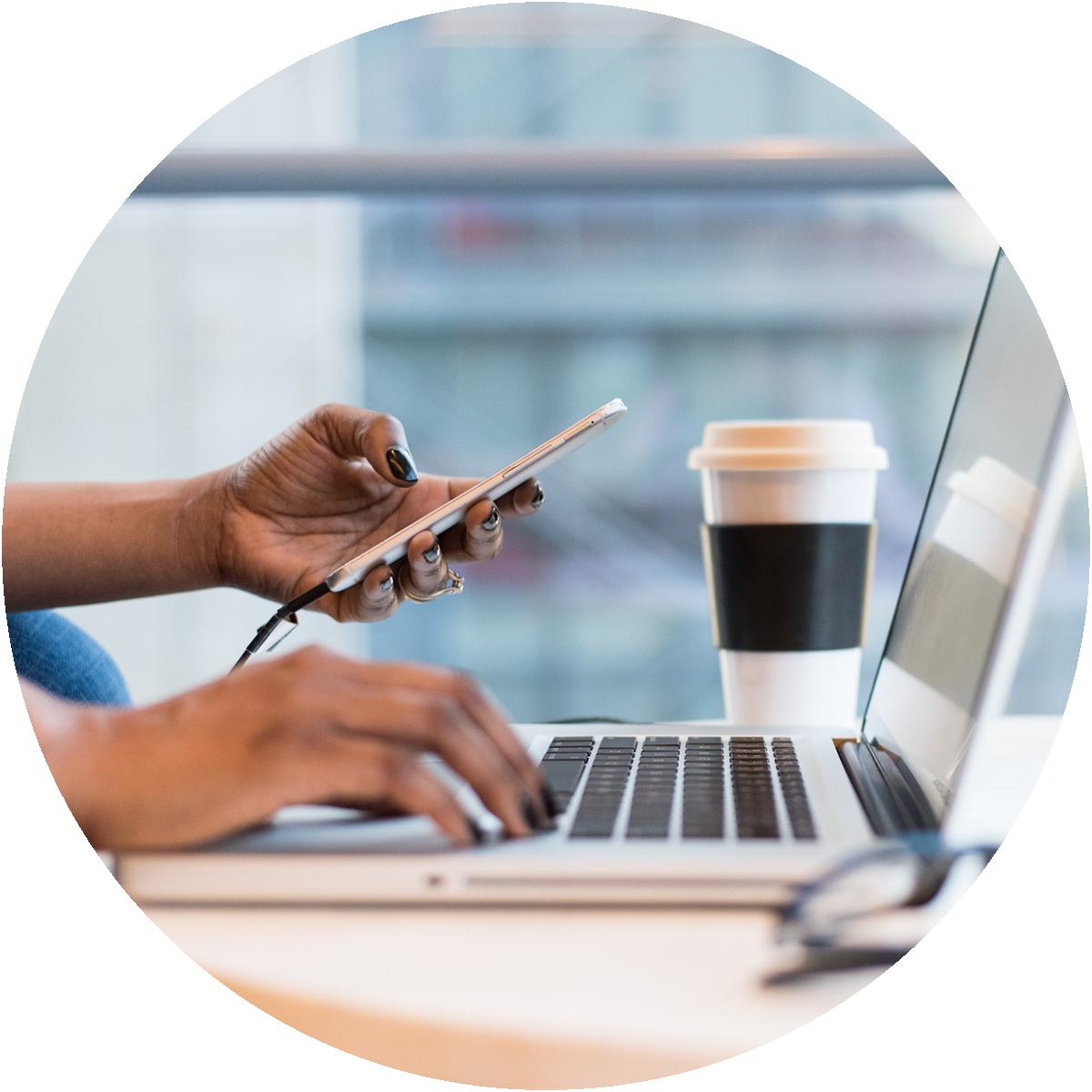 Comprehensive Management Portal